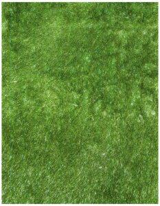 thảm lông xù màu xanh lá chuối
