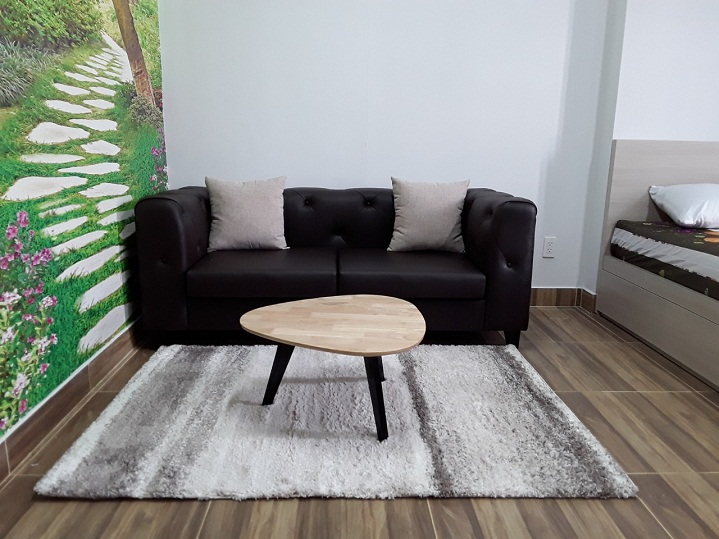 thảm trang trí phòng khách đẹp 5